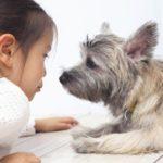 子供専門オンライン英会話「リップルキッズパーク」で幼児の頃から英語に親しみを・・・