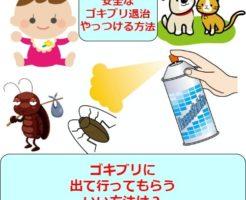 安全なゴキブリ撃退方法